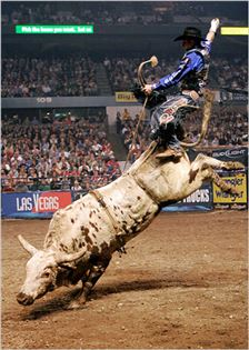 Rodeo Houston